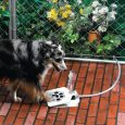 This pet accessory is something you can have for your dogs if you can condition them to step on the pedal to drink on this Doggie Fountain. The accessory works […]